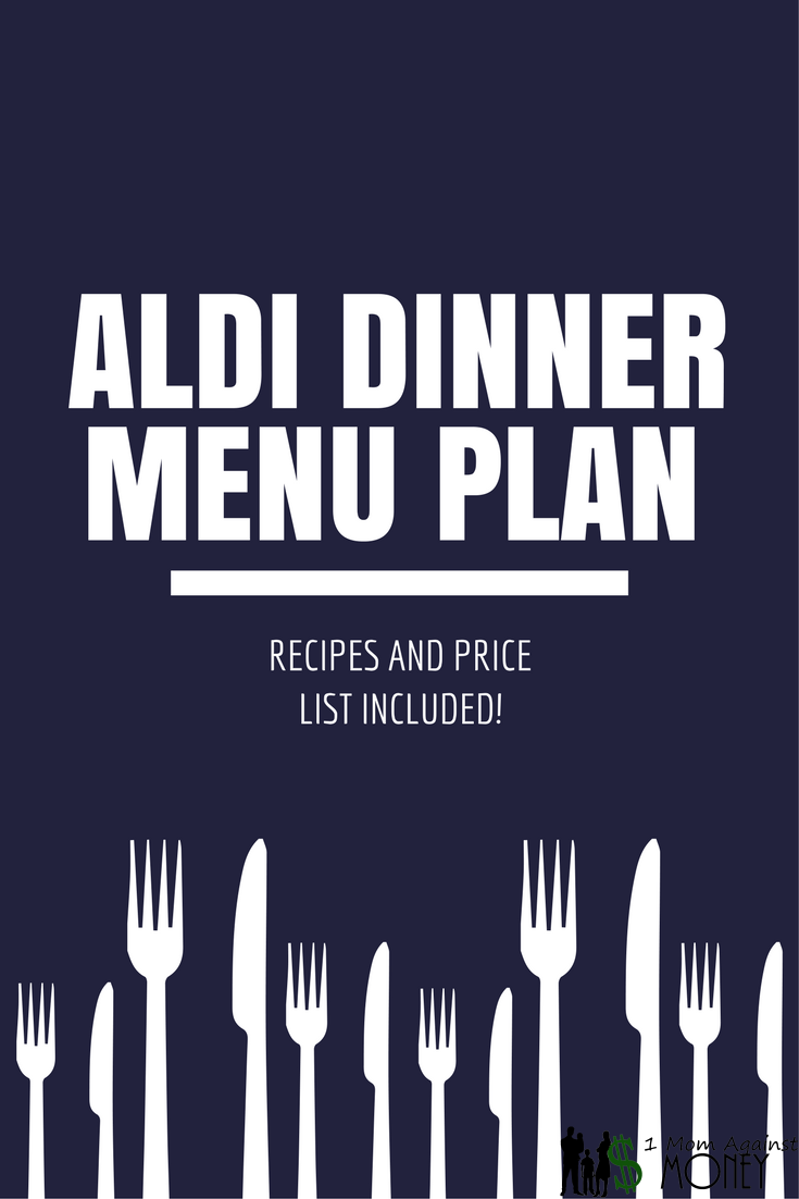 Read more about the article Aldi Dinner Recipes and Shopping List Week #1