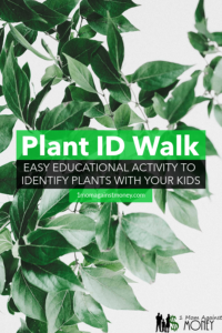 Identify Plants Walk