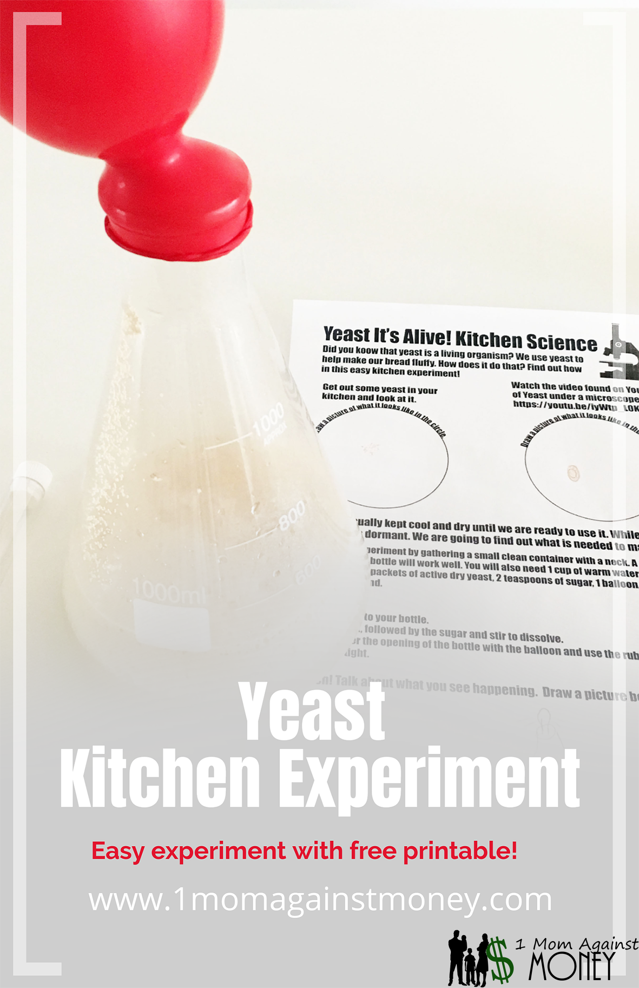 You are currently viewing Yeast It's Alive! Kitchen Science