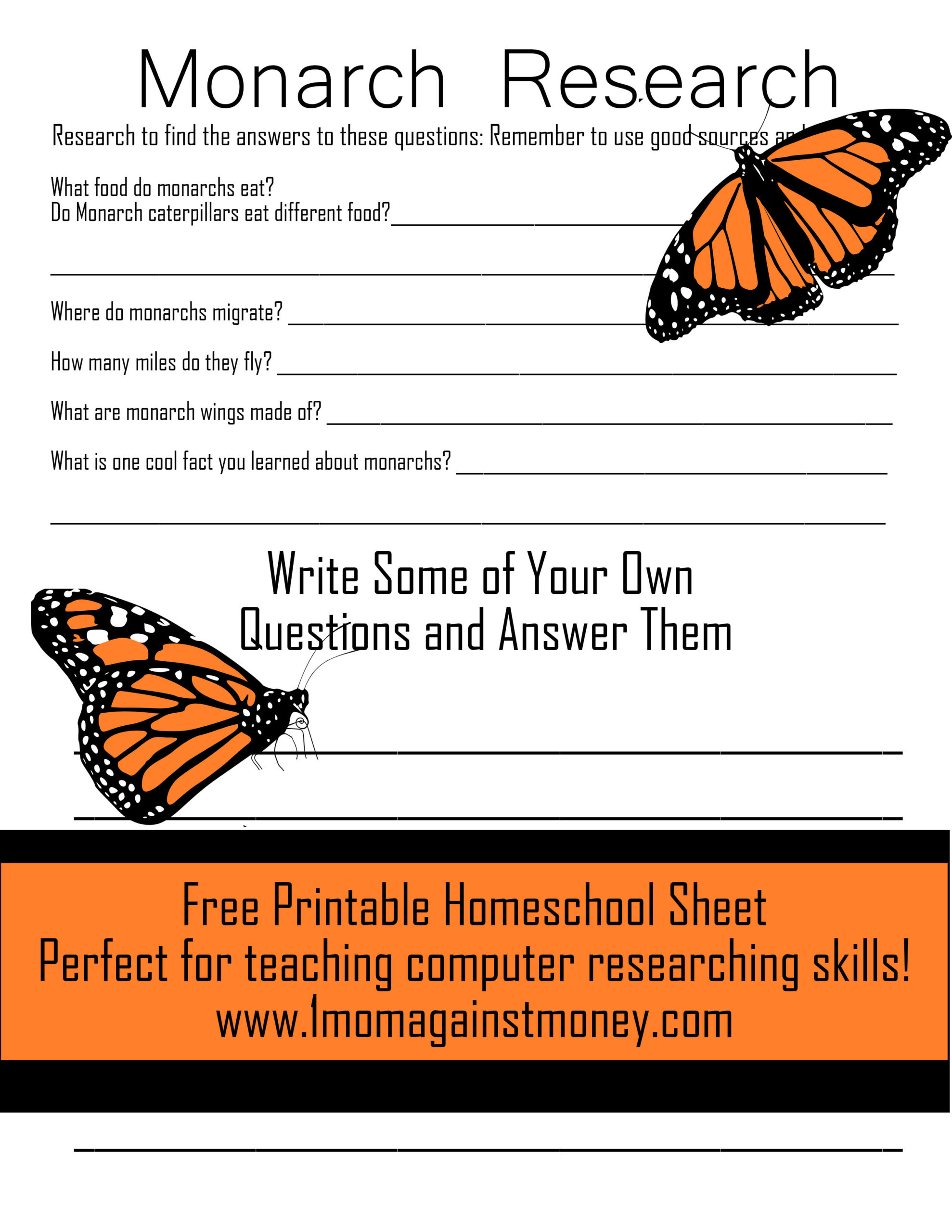 Read more about the article All About Monarchs