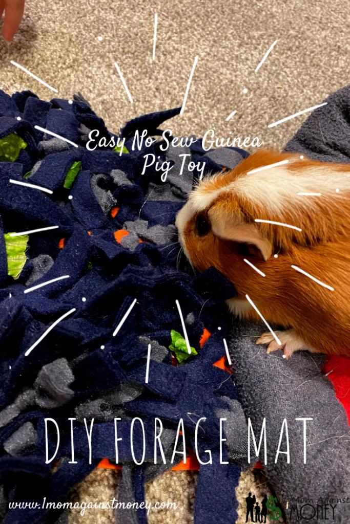 DIY No Sew Guinea Pig Rooting or Forage Mat